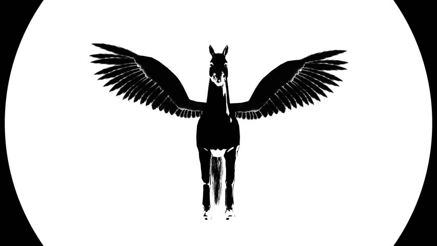 852x480 Pegasus Silhouette. Alpha Channel. 4k Video. Isolated. Ultra Hd