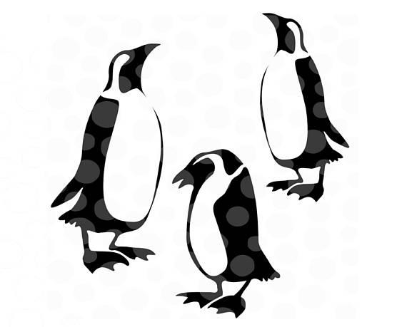 570x459 Penguin Svg, Penguin Clipart, Penguins Svg, Penguin File, Svg