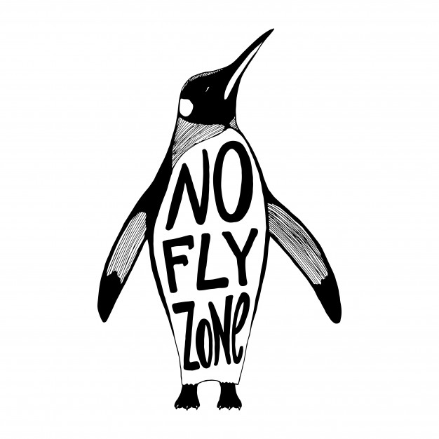 626x626 Penguin Vector Vectors, Photos And Psd Files Free Download