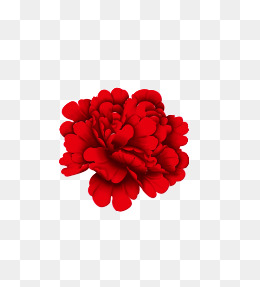 260x287 Red Peony Png Images Vectors And Psd Files Free Download