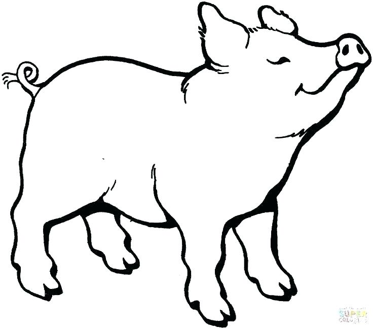 736x649 Free Pig Pictures Free Pig Silhouette Vector Free Peppa Pig
