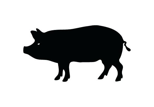 500x350 Free Pig Pictures Free Pig Silhouette Vector Free Pig Clipart