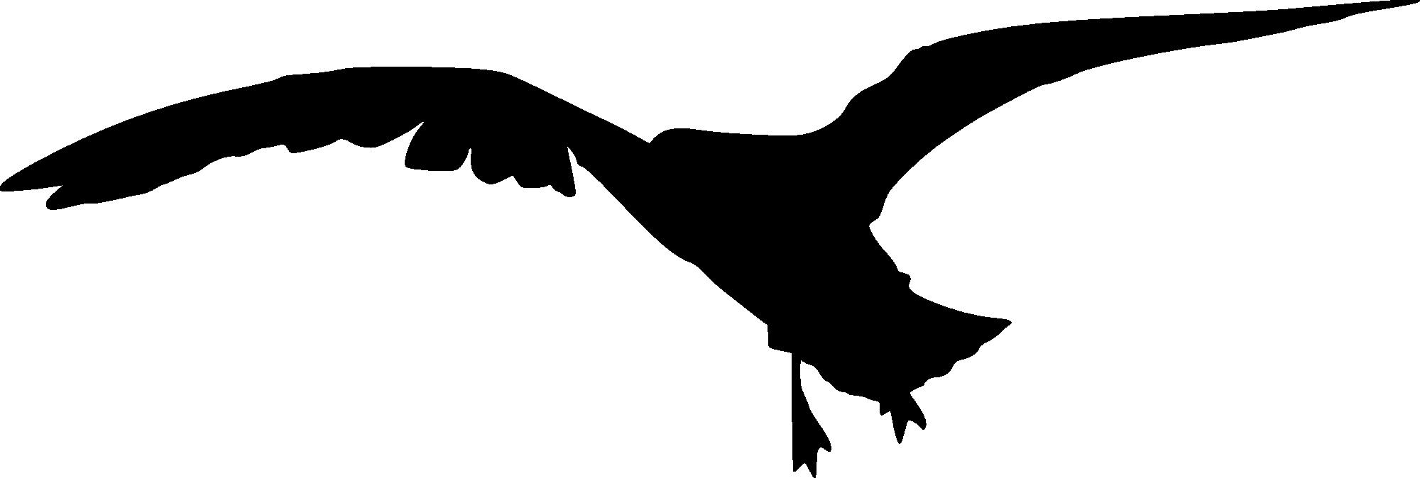 Peregrine Falcon Silhouette