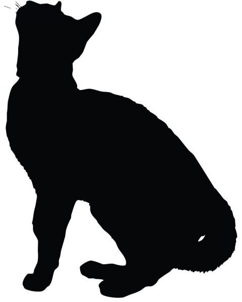 480x600 Persian Cat Silhouette Ebay Pictures Regarding Appealing