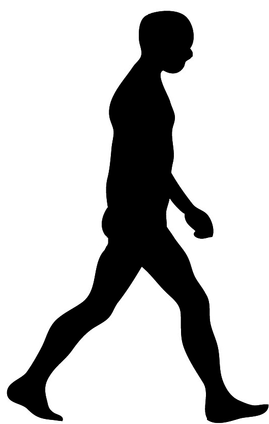 529x834 Man Walking Silhouette Clipart