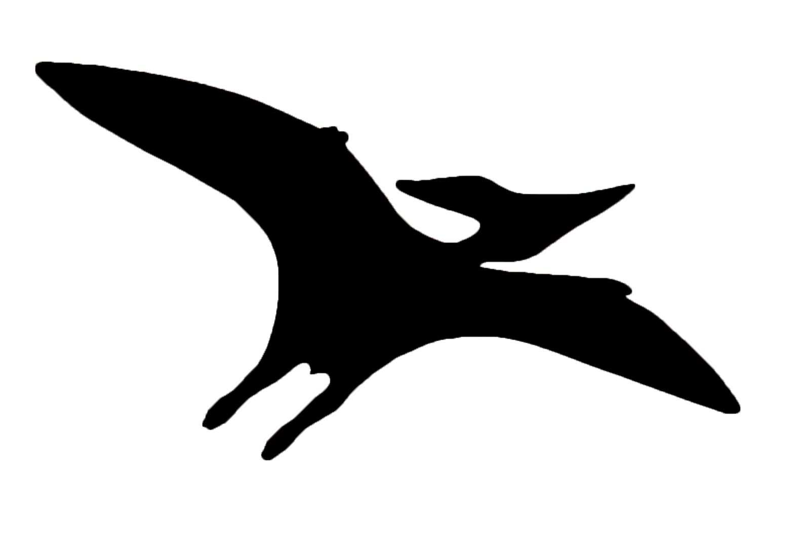 1580x1072 A Silhouette Of A Flying Reptile (Pteranodon Longiceps