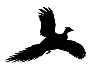 320x249 Pheasant Silhouette Decal Sticker