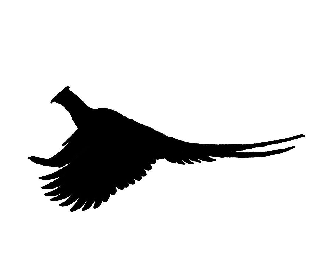 1100x911 Running Rooster Pheasant Silhouette, Pheasant Hunting Decal