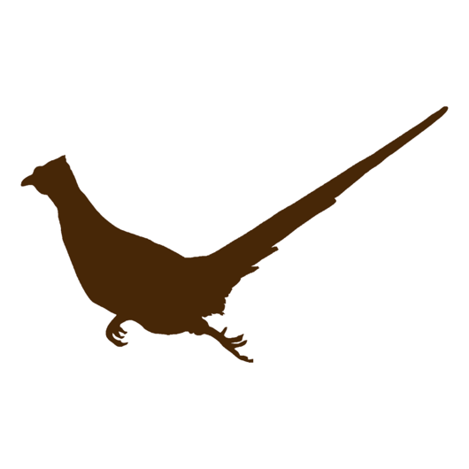 530x530 Running Rooster Pheasant Silhouette, Pheasant Hunting Decal