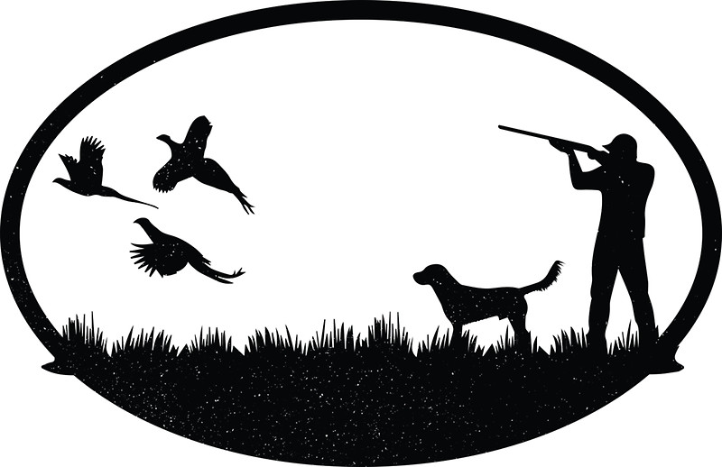 800x518 Vintage Pheasant Hunting Illustration Stickers By Cj Reed Redbubble