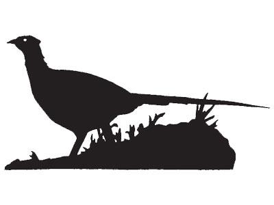400x300 Pheasant Silhouette