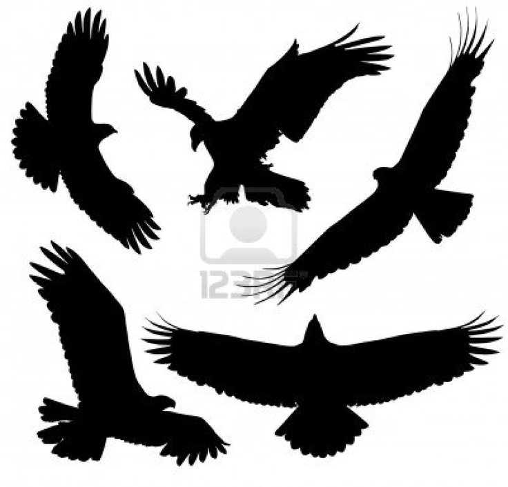 Philippine Eagle Silhouette