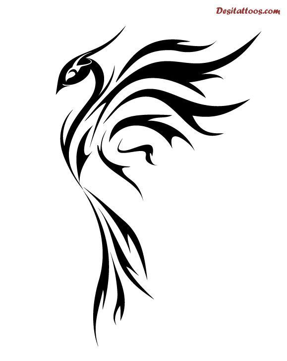 579x729 Easy Phoenix Tattoo Designs . Figure Out Even More By Checking
