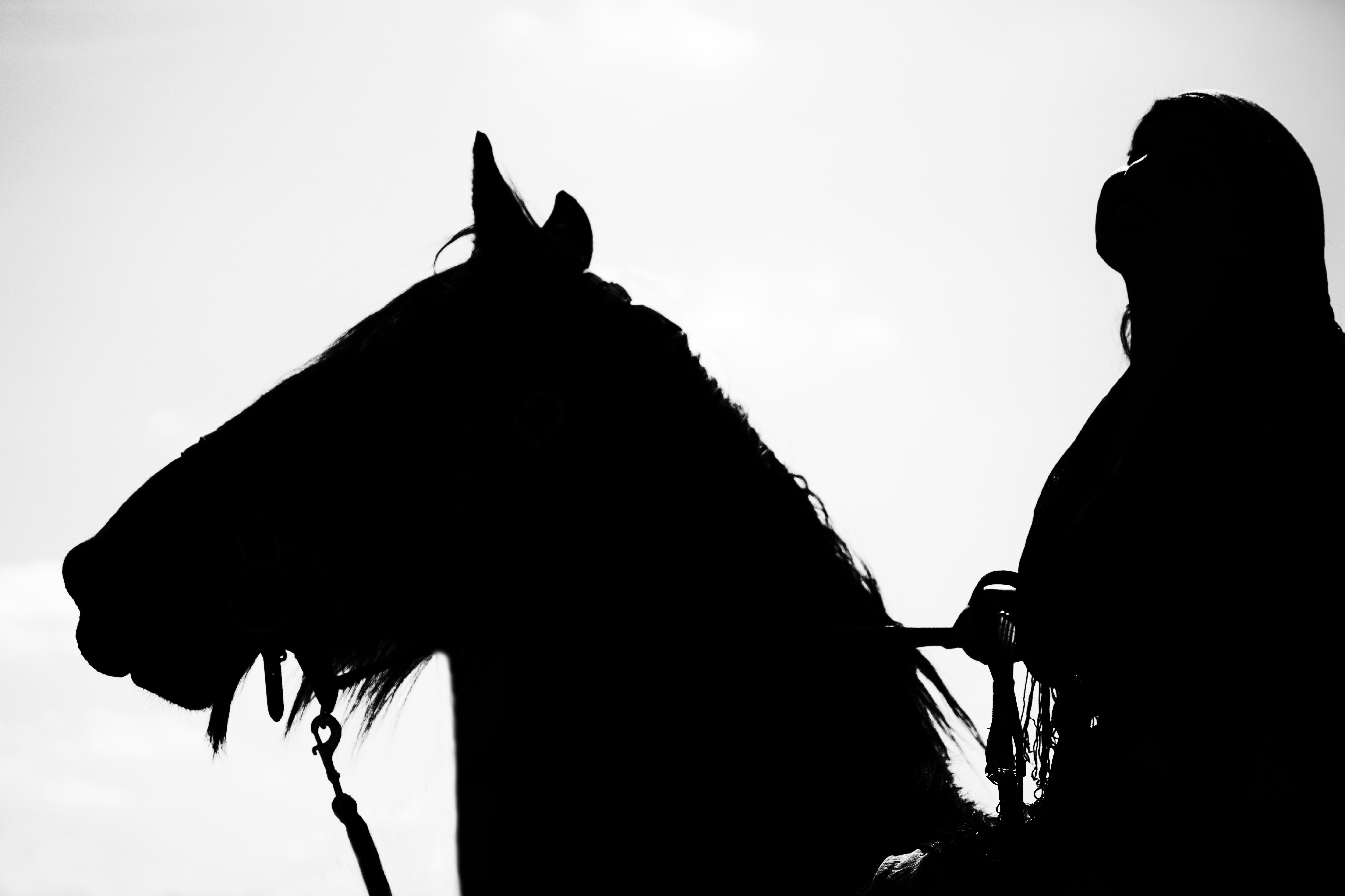 5760x3840 Free Images Silhouette, Black And White, Shadow, Jumper, Wrinkle