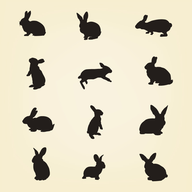 800x800 Rabbit Vector Silhouette Pack