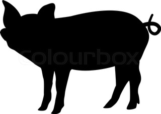 320x228 Pig Collection In Color, Outlines And Silhouettes