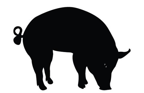480x309 Pig Silhouette Vectors Silhouettes Vector