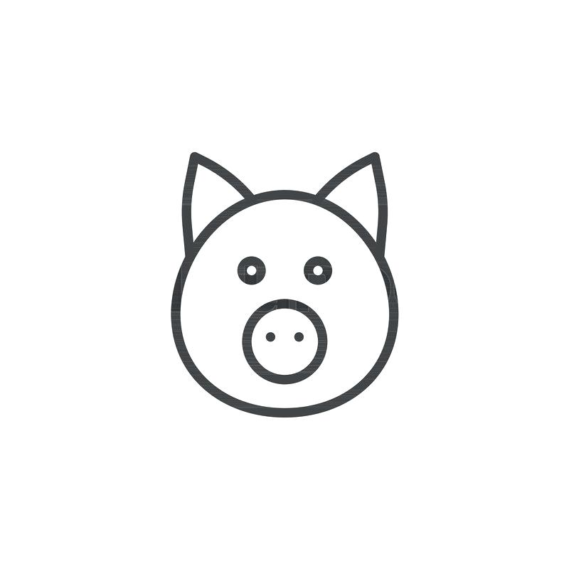 800x800 Outline Pig Vector Illustration Stock Vector Illustration