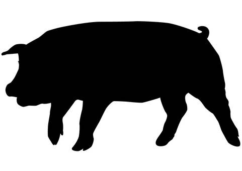 481x340 Free Cliparts Silhouette, Pig, Lid, A Pig