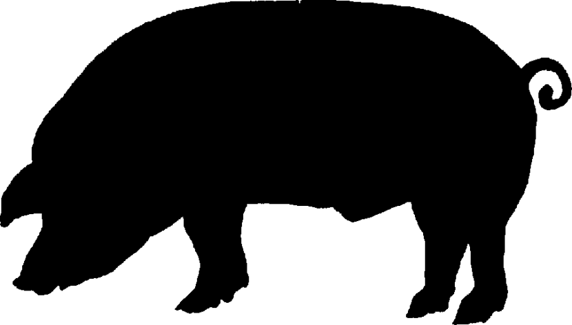 pig silhouette at getdrawings com free for personal use pig rh getdrawings com pig clip art cartoon pig clipart black and white
