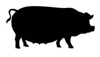 320x184 Pig Silhouette 5 Decal Sticker
