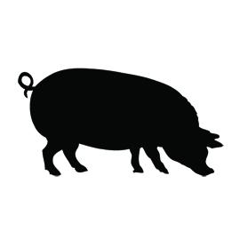 270x270 Pig Silhouette Stencil Free Stencil Gallery