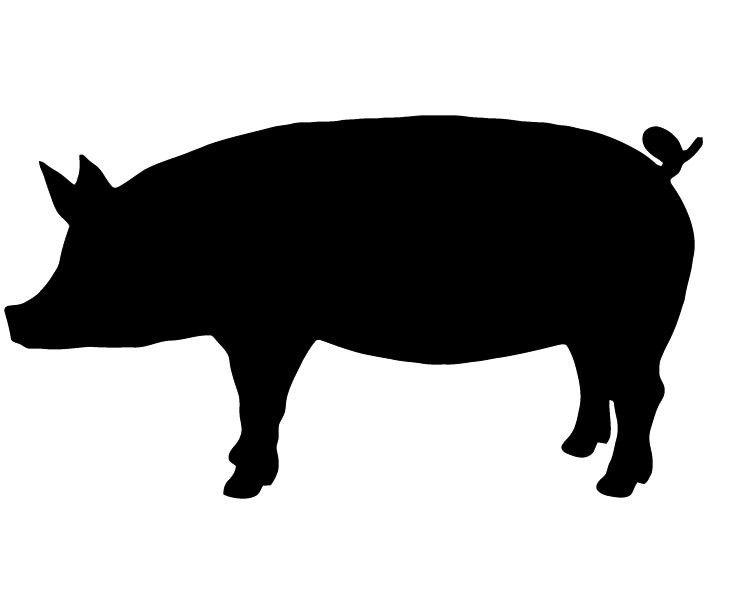 731x600 Show Pig Silhouette