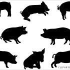 140x140 Pig Silhouette Animal Free Black White Clipart Images Clipartblack