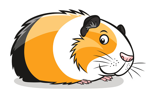 509x339 Guinea Pig Silhouette Vector