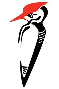 236x353 Pileated Woodpecker Limited Edition Print Woodpeckers, Limited