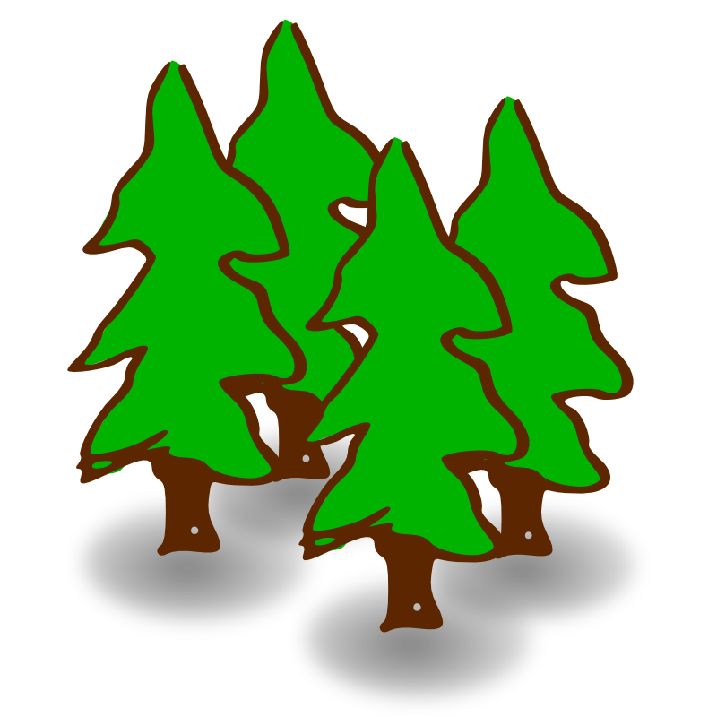 800x800 Pine Tree Clipart Forest Scene