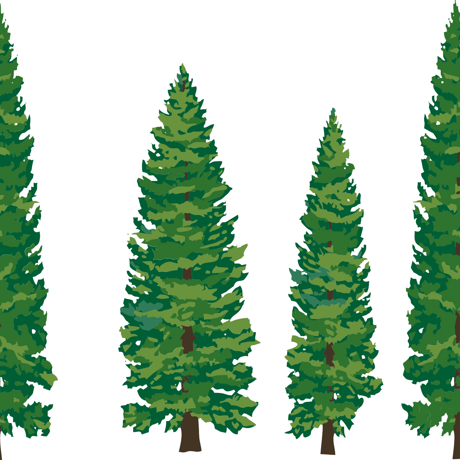 1500x1500 Pine Trees Silhouette Pine Clipart Ndi85k9cepng, Cartoon Pine Tree