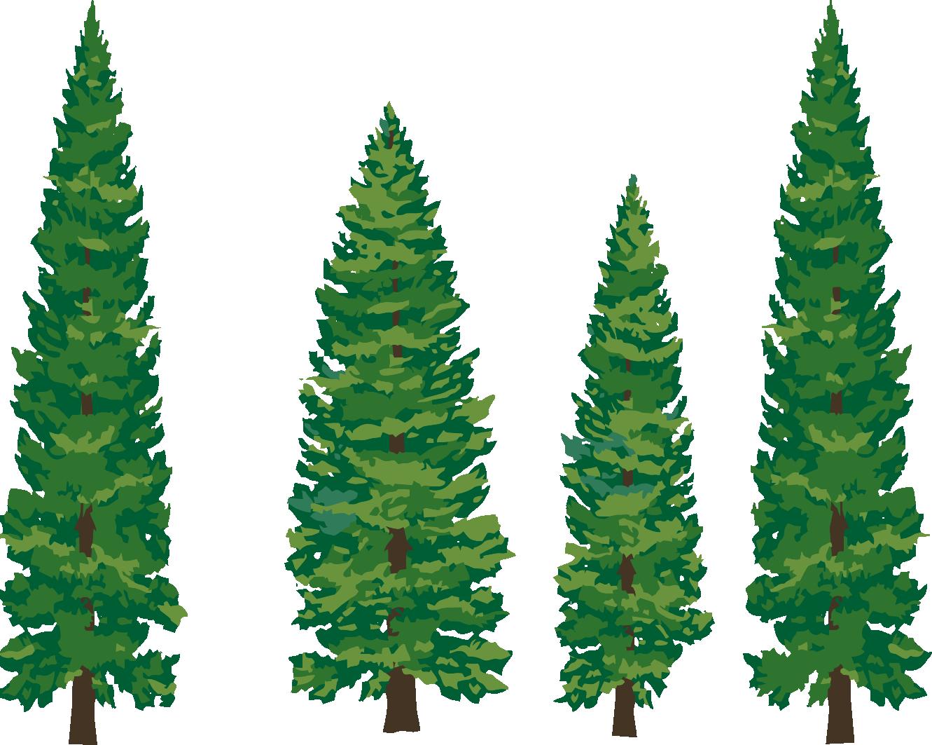 1331x1063 Pine Tree Silhouette Clipart