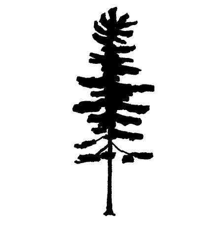 Pine Tree Silhouette Tattoo