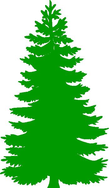 348x598 Fir Tree Clipart Douglas Fir