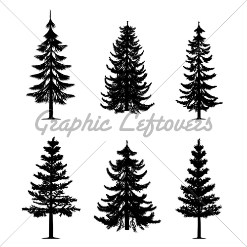 500x500 Collection Of 6 Pine Trees On Isolated White Ba Ink