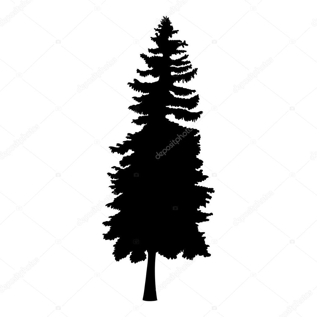 1024x1024 Drawn Fir Tree Silhouette