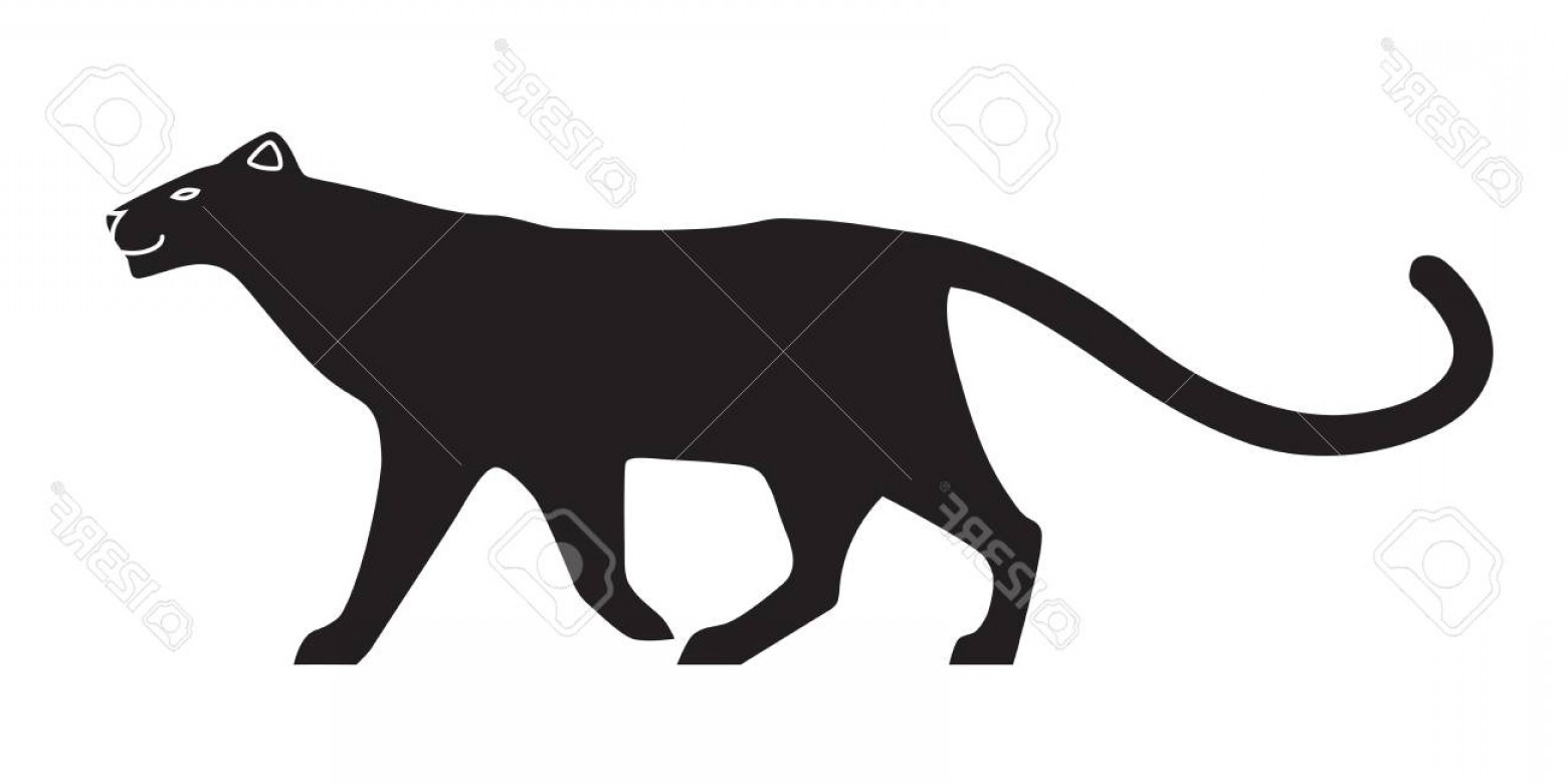 1560x780 Photostock Vector Black Stylized Silhouette Of Panther Vector
