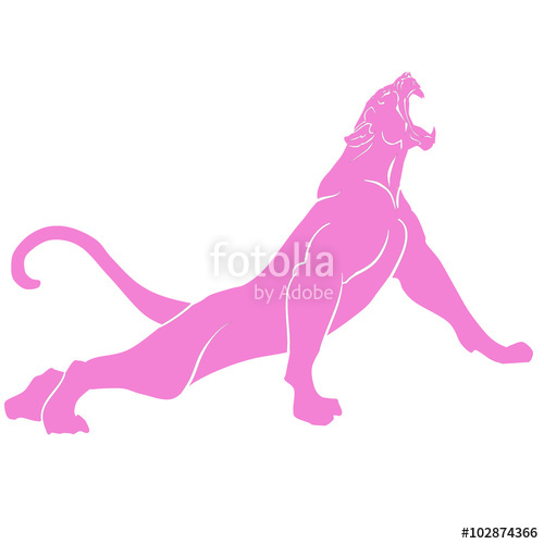500x500 Snarling pink panther with huge tusks Stock image and royalty
