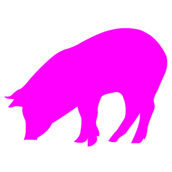 340x340 Free Cliparts Silhouette, Pig, Lid, A Pig