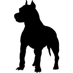 250x250 Opinion Starling On Ending The Pitbull Ban
