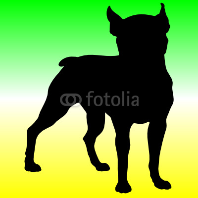 Pitbull Head Silhouette