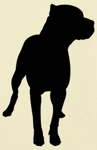 190x293 Pitbull Silhouette By Surreal197 Spreadshirt