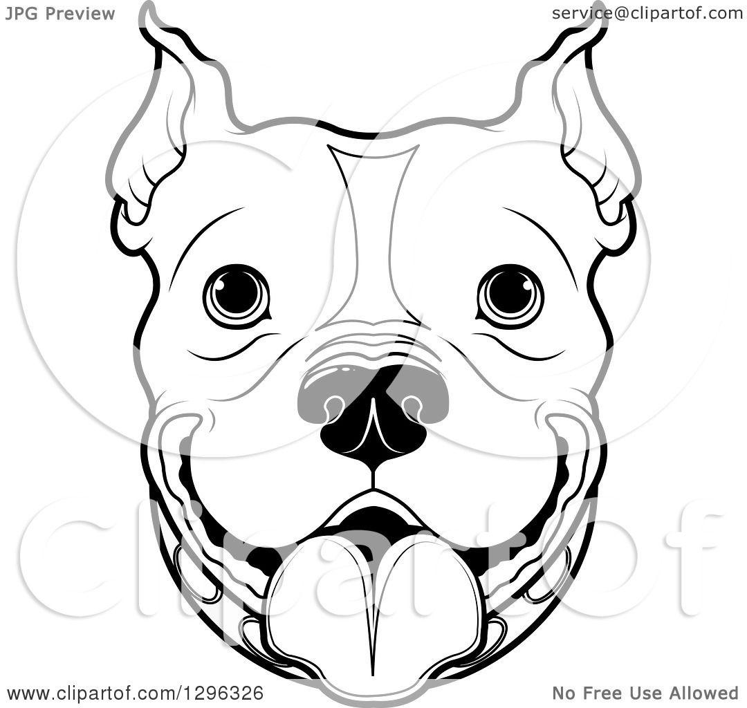1080x1024 Pitbull Face Clipart