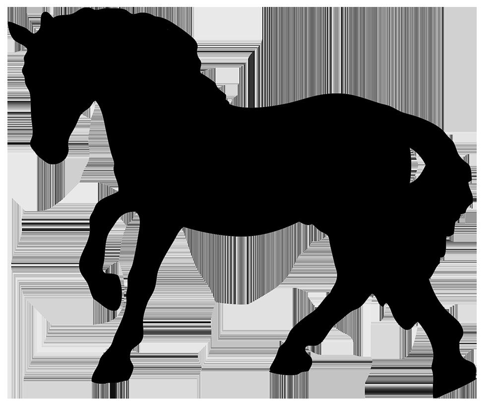1004x821 Horse Silhouette