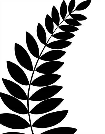 340x432 Leaf Silhouette I Fine Art Print By Chariklia Zarris