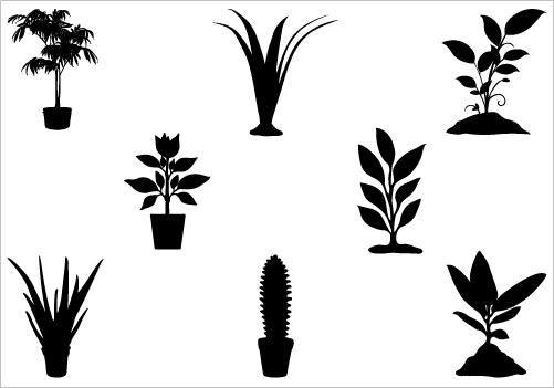 501x351 Plant Silhouette Vector