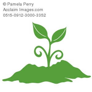 300x300 Art Illustration Of A Silhouette Of A Seedling Growing Silhouette