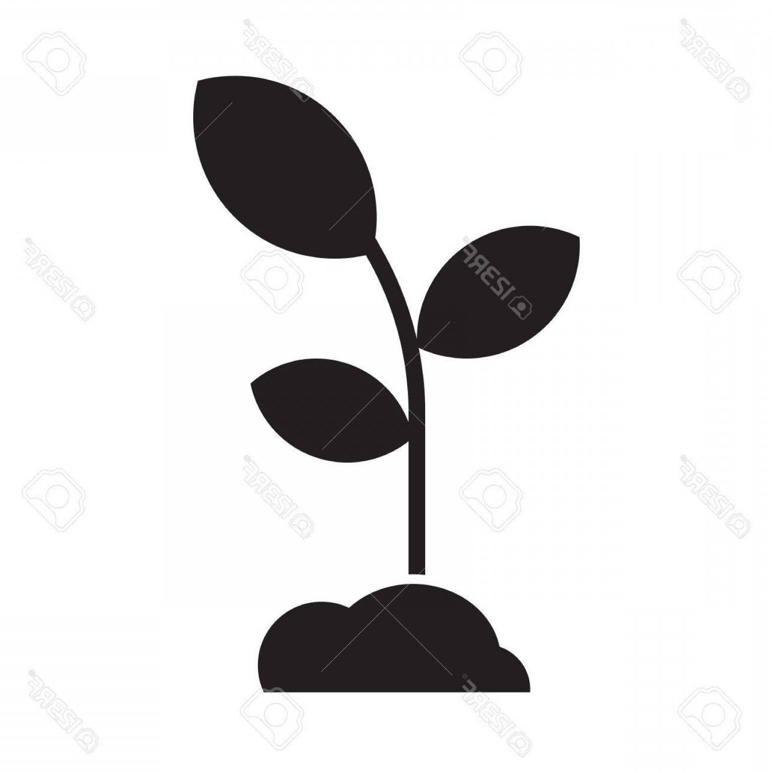 1560x1560 Photostock Vector Seedling With Leaves And Soil Abstract Growing