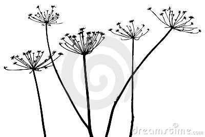 400x267 Vector Plants Silhouettes By Hpphoto, Via Dreamstime Place Cards